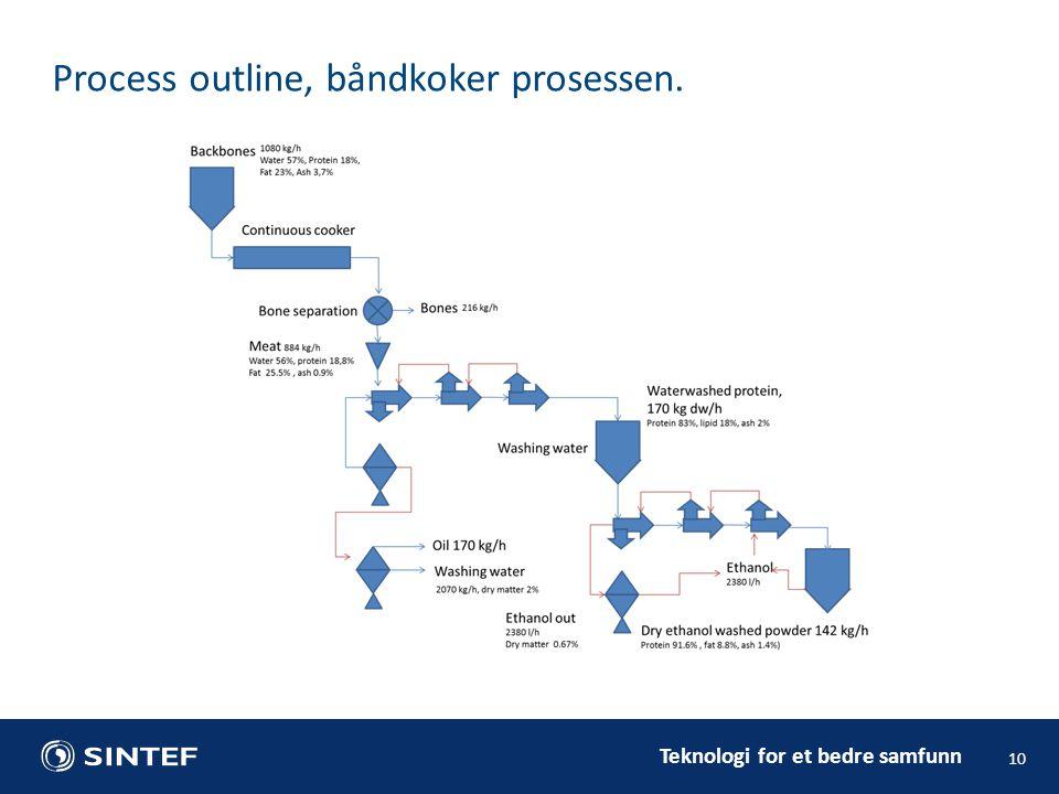 Process outline, båndkoker prosessen.