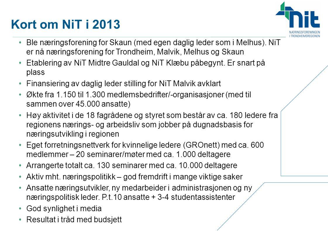 Kort om NiT i 2013
