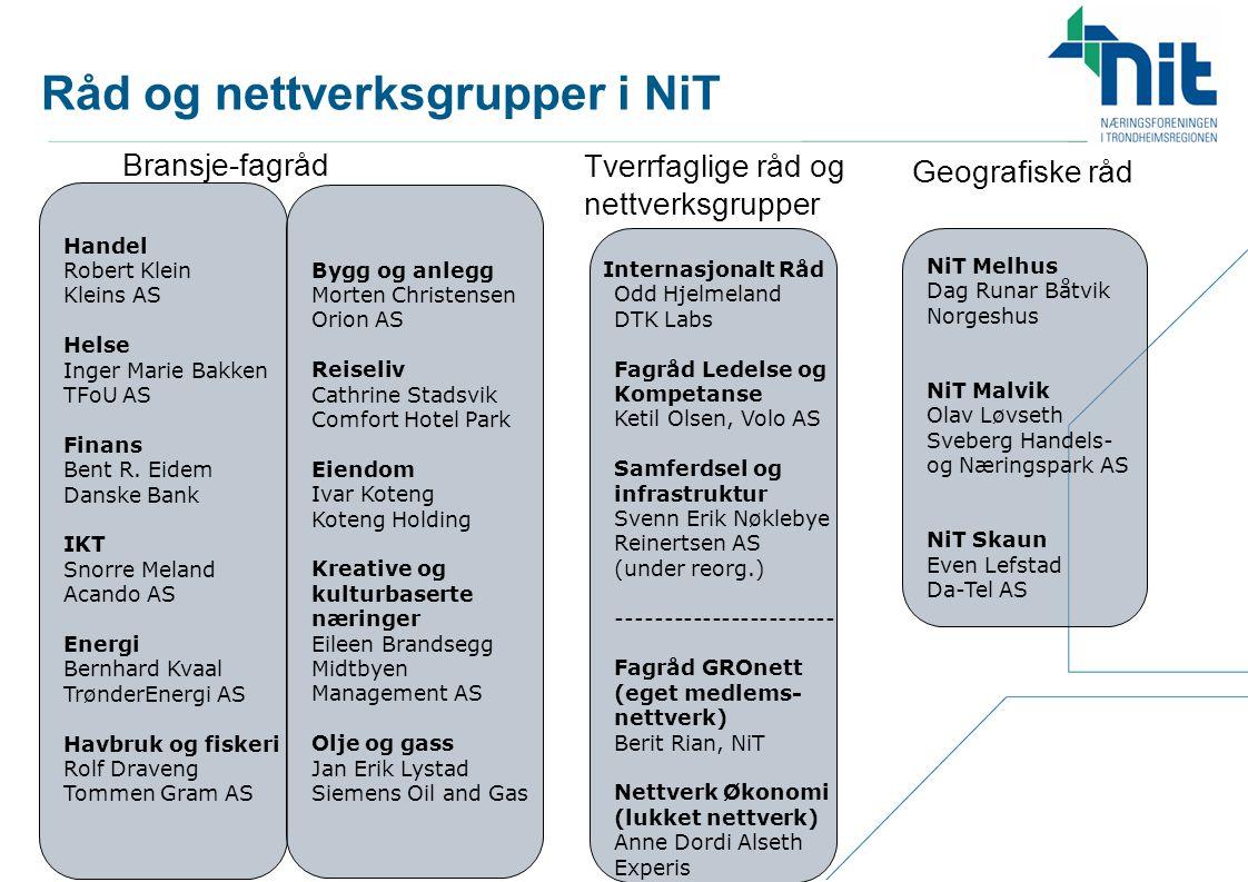 Råd og nettverksgrupper i NiT