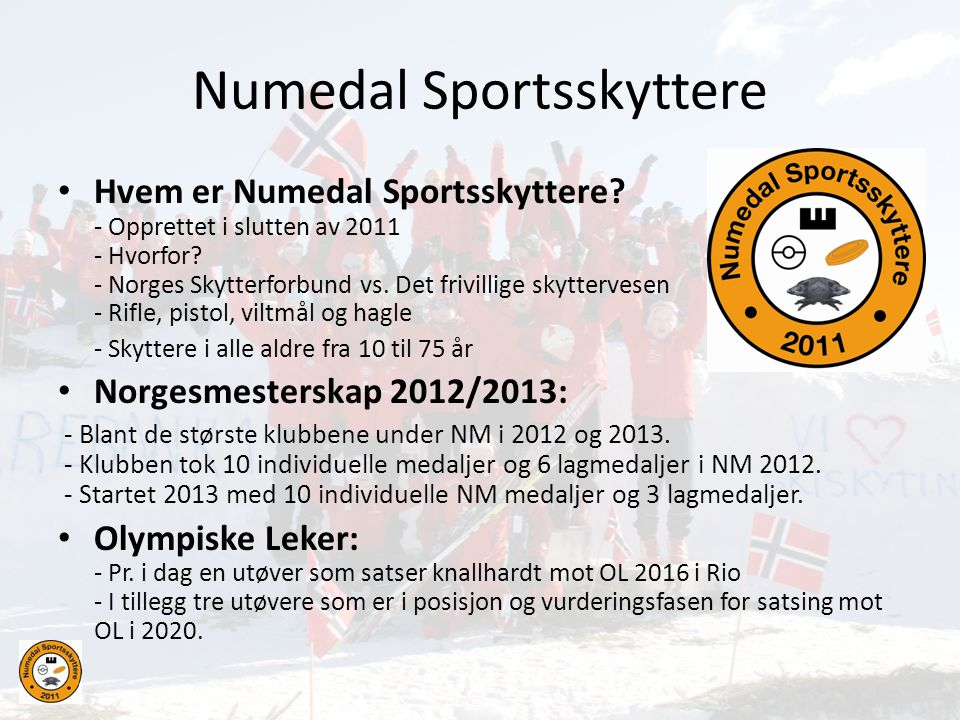 Numedal Sportsskyttere