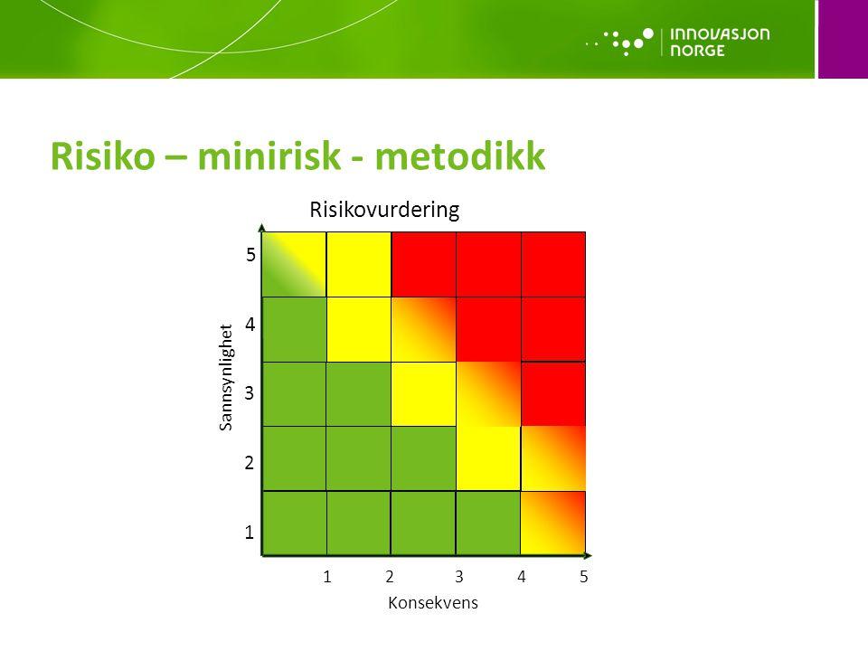 Risiko – minirisk - metodikk