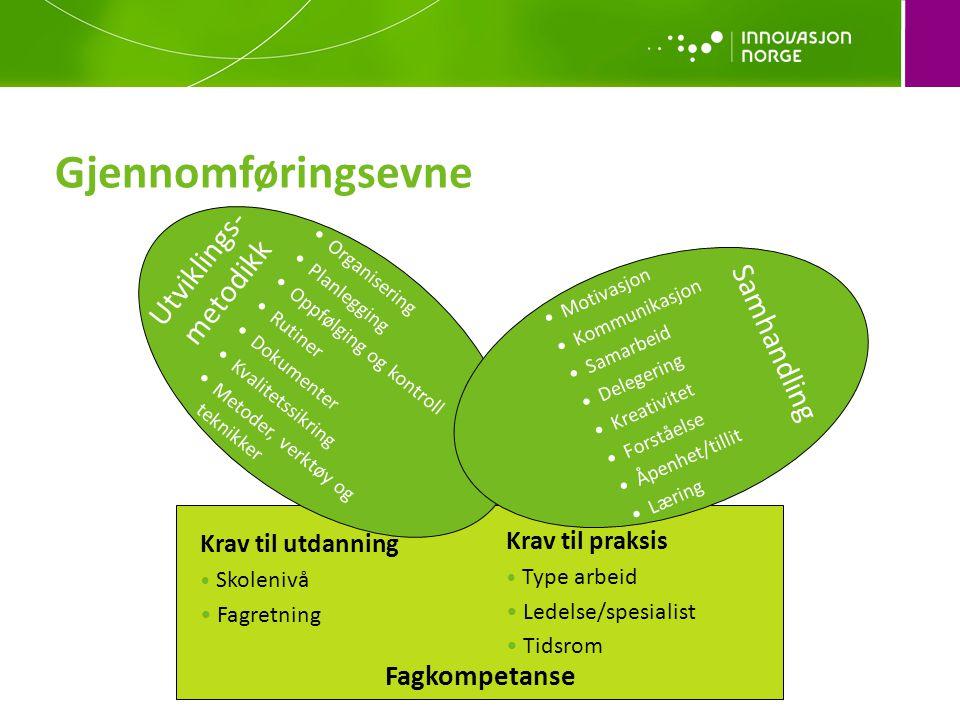Gjennomføringsevne Utviklings-metodikk Samhandling Fagkompetanse
