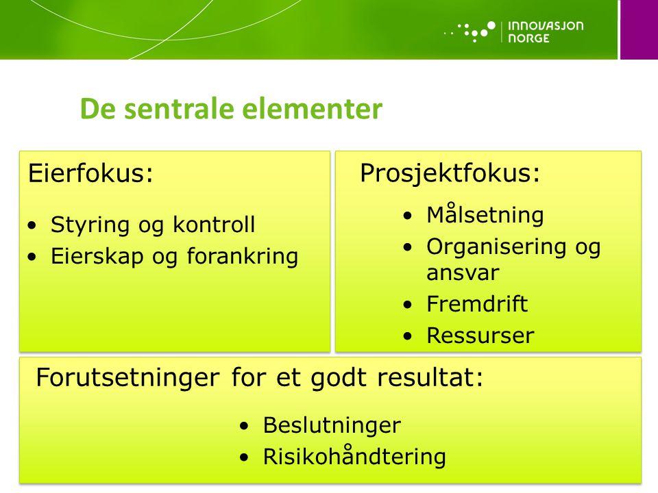 De sentrale elementer Eierfokus: Prosjektfokus: