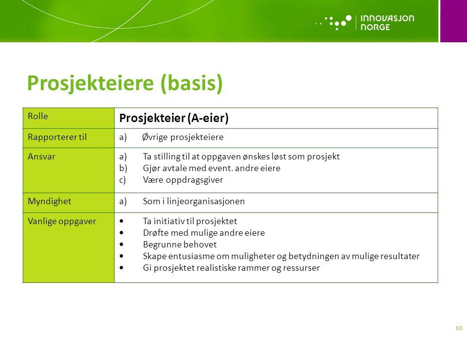 Prosjekteiere (basis)
