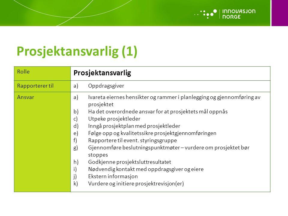 Prosjektansvarlig (1) Prosjektansvarlig Rolle Rapporterer til