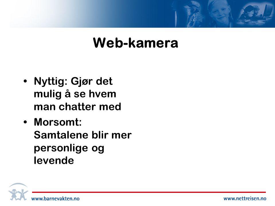 Web-kamera Nyttig: Gjør det mulig å se hvem man chatter med