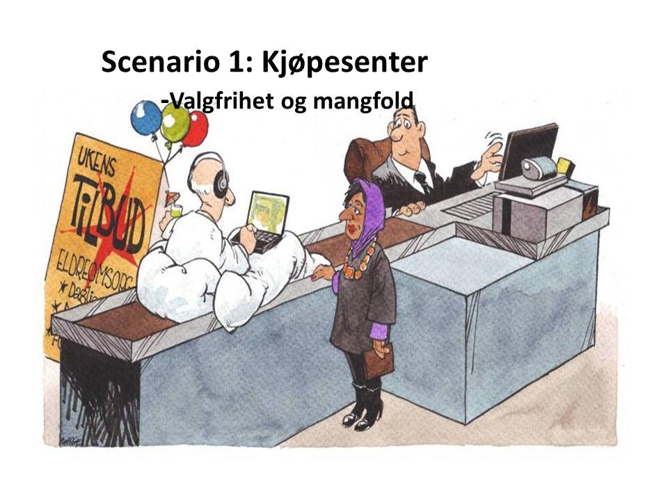 Scenario 1: Kjøpesenter -Valgfrihet og mangfold