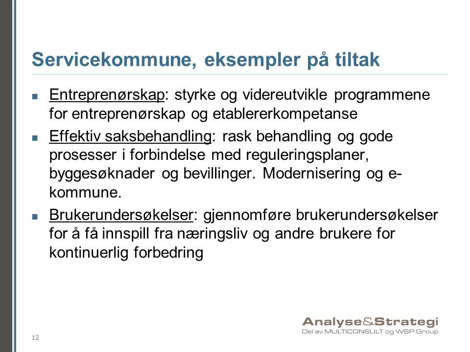Servicekommune, eksempler på tiltak