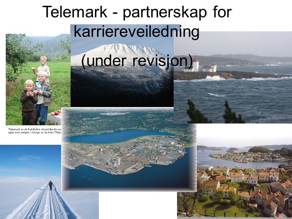 Telemark - partnerskap for karriereveiledning
