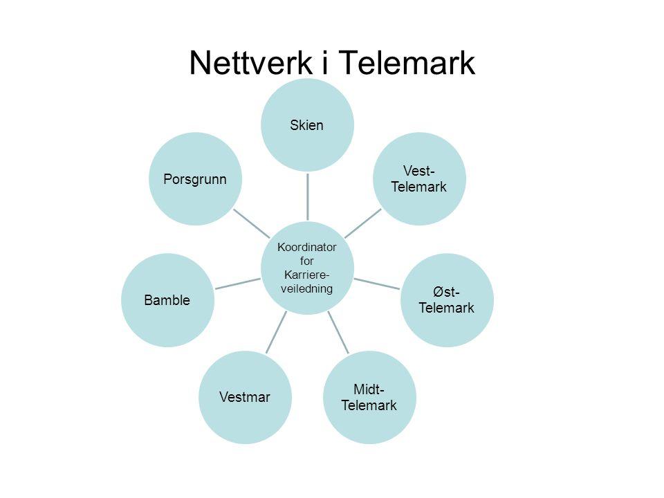 Nettverk i Telemark Koordinator Karriere- veiledning for Skien