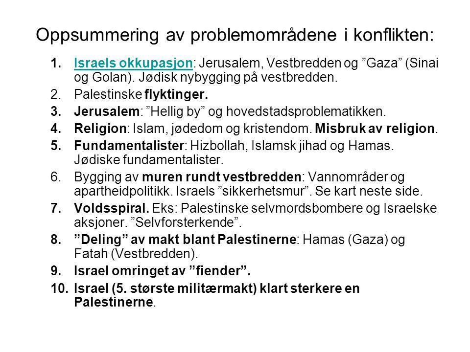 Oppsummering av problemområdene i konflikten: