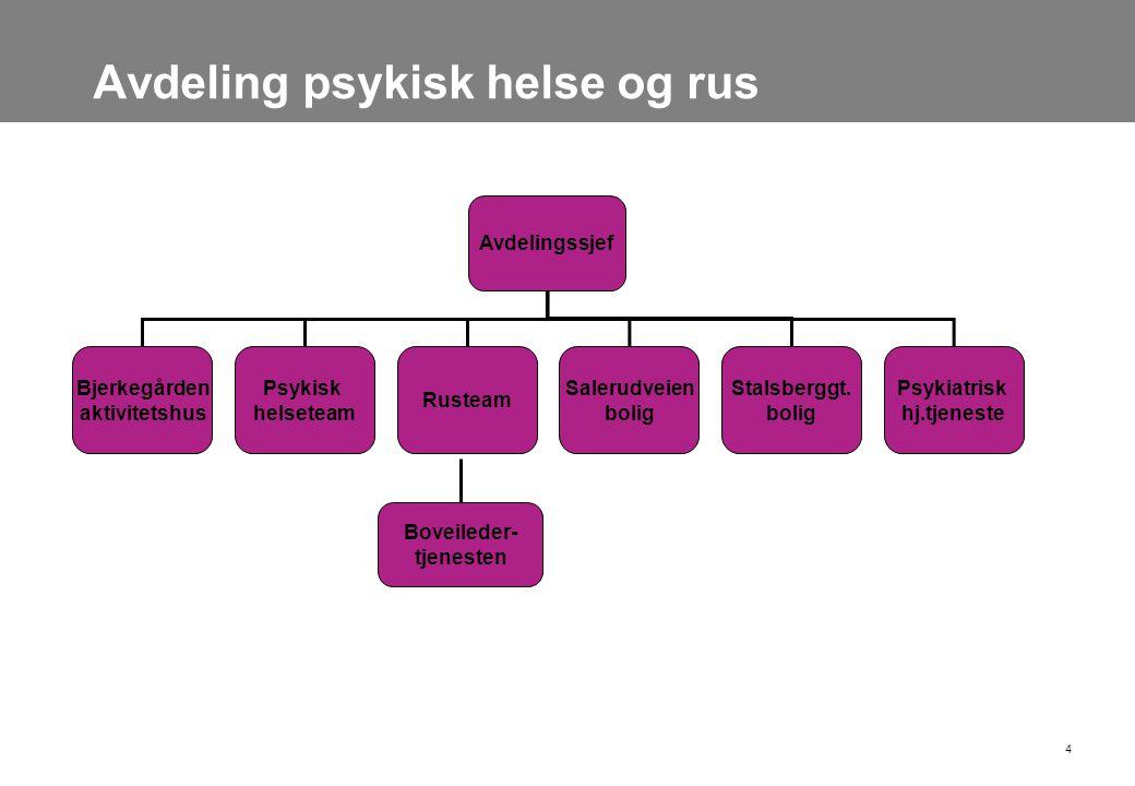Avdeling psykisk helse og rus