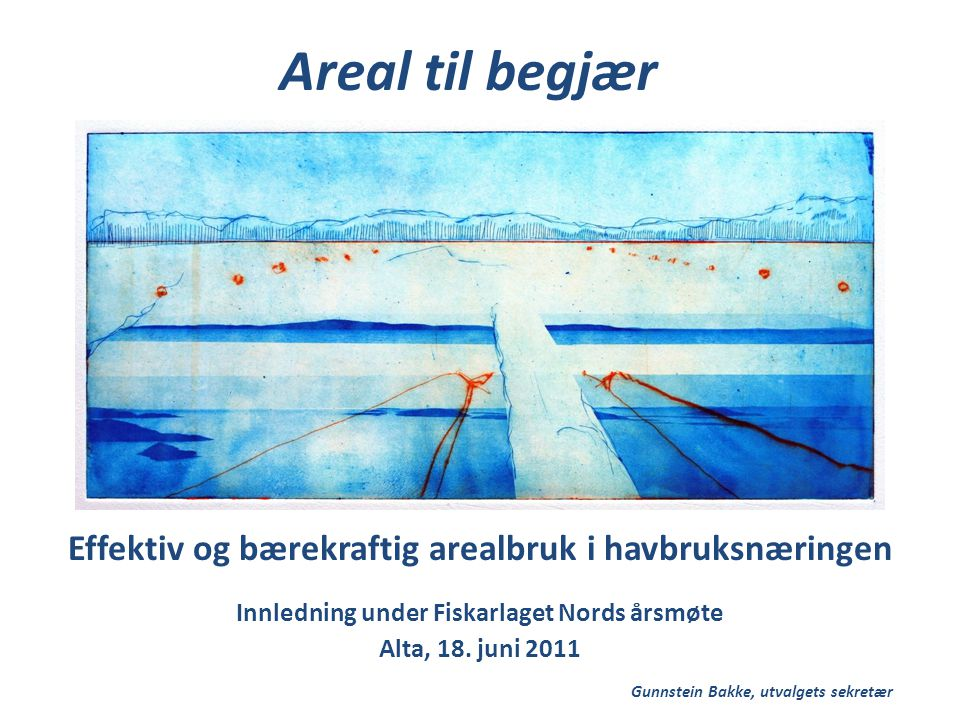 Areal til begjær Effektiv og bærekraftig arealbruk i havbruksnæringen