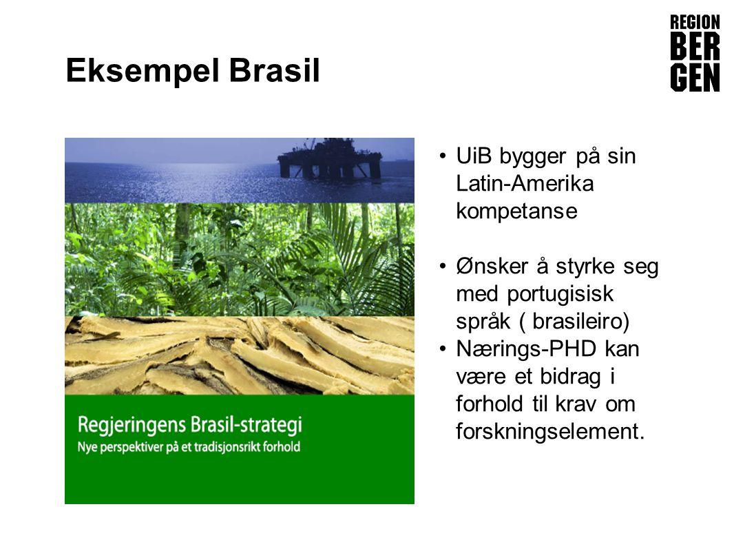 Eksempel Brasil UiB bygger på sin Latin-Amerika kompetanse