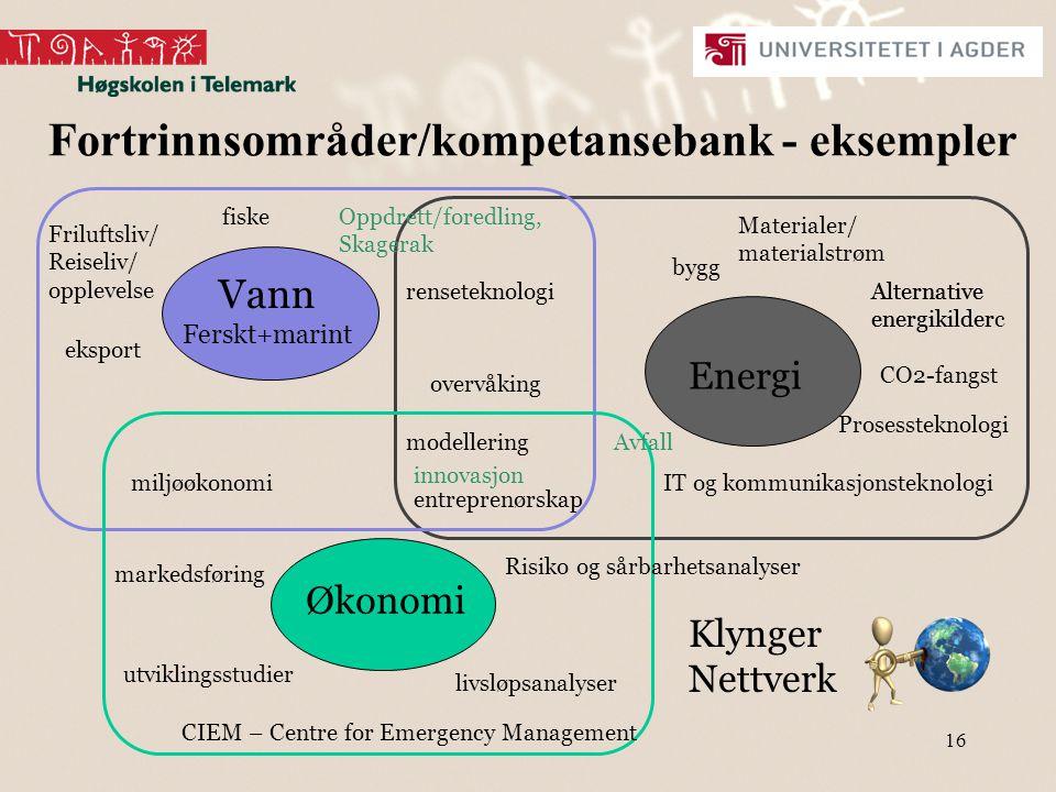 Fortrinnsområder/kompetansebank - eksempler