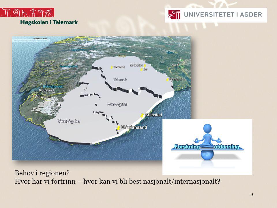 Behov i regionen Hvor har vi fortrinn – hvor kan vi bli best nasjonalt/internasjonalt