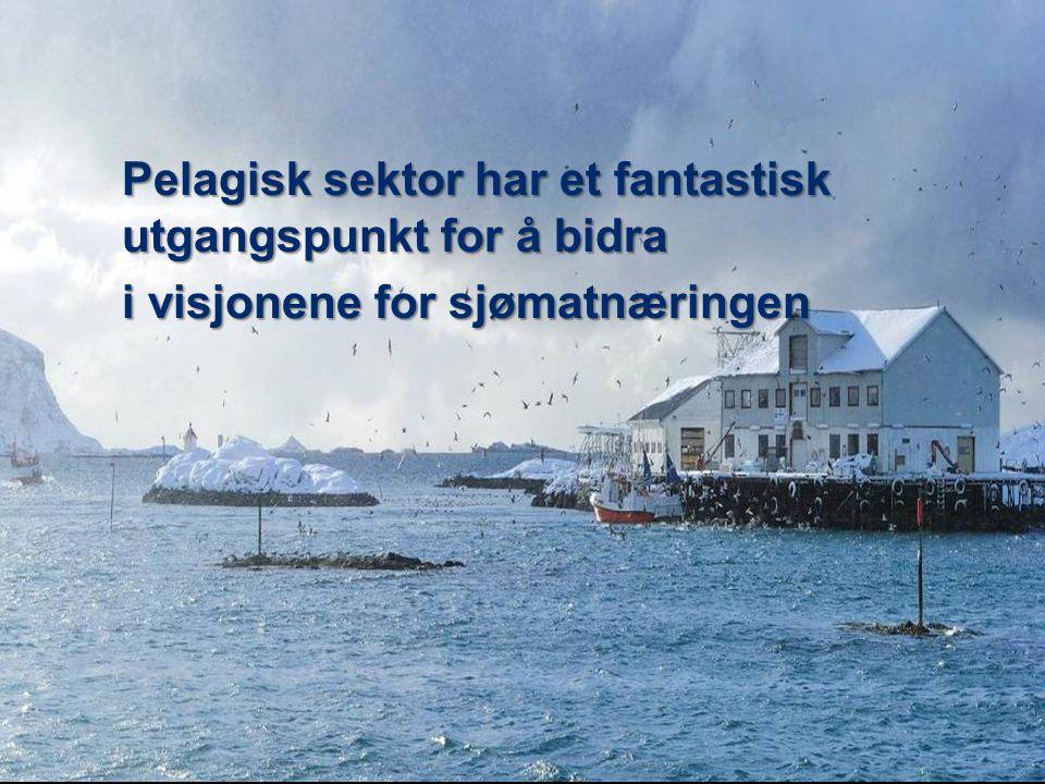 Pelagisk sektor har et fantastisk utgangspunkt for å bidra