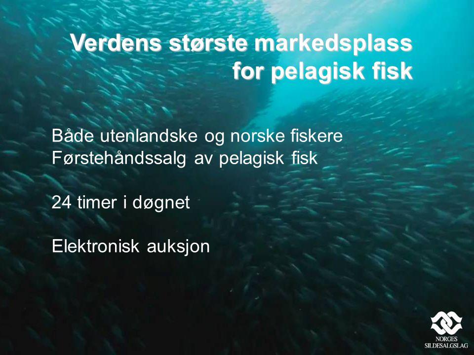 Verdens største markedsplass for pelagisk fisk
