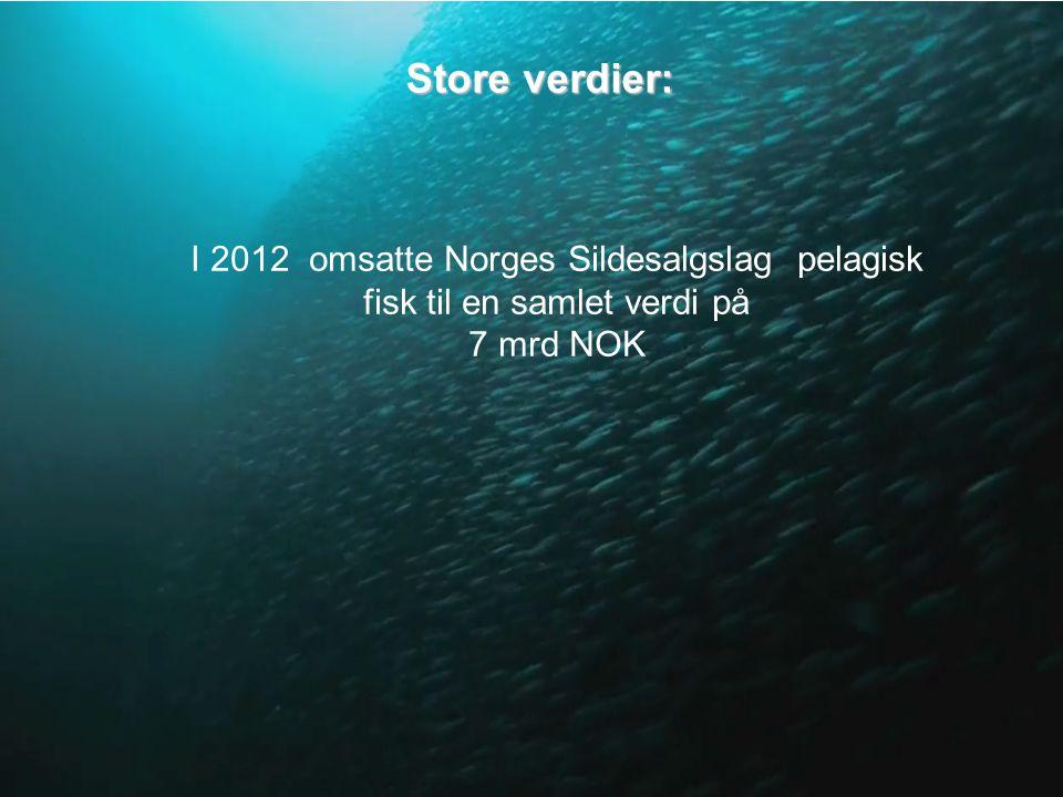 Store verdier: I 2012 omsatte Norges Sildesalgslag pelagisk fisk til en samlet verdi på 7 mrd NOK