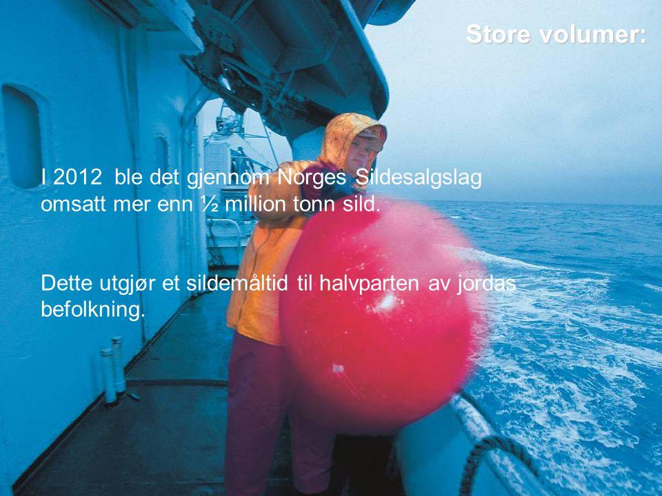 Store volumer: I 2012 ble det gjennom Norges Sildesalgslag omsatt mer enn ½ million tonn sild.