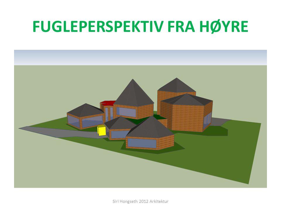 FUGLEPERSPEKTIV FRA HØYRE