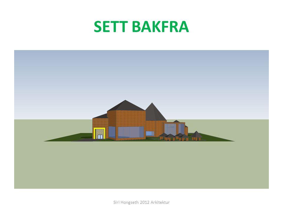 Siri Hongseth 2012 Arkitektur
