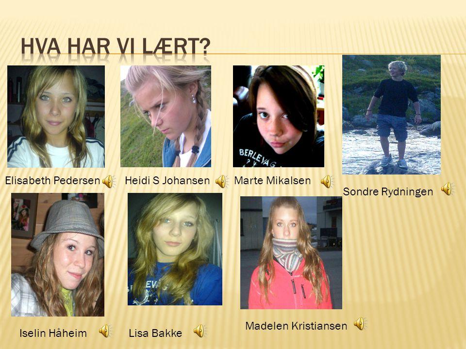 Hva har vi lært Elisabeth Pedersen Heidi S Johansen Marte Mikalsen