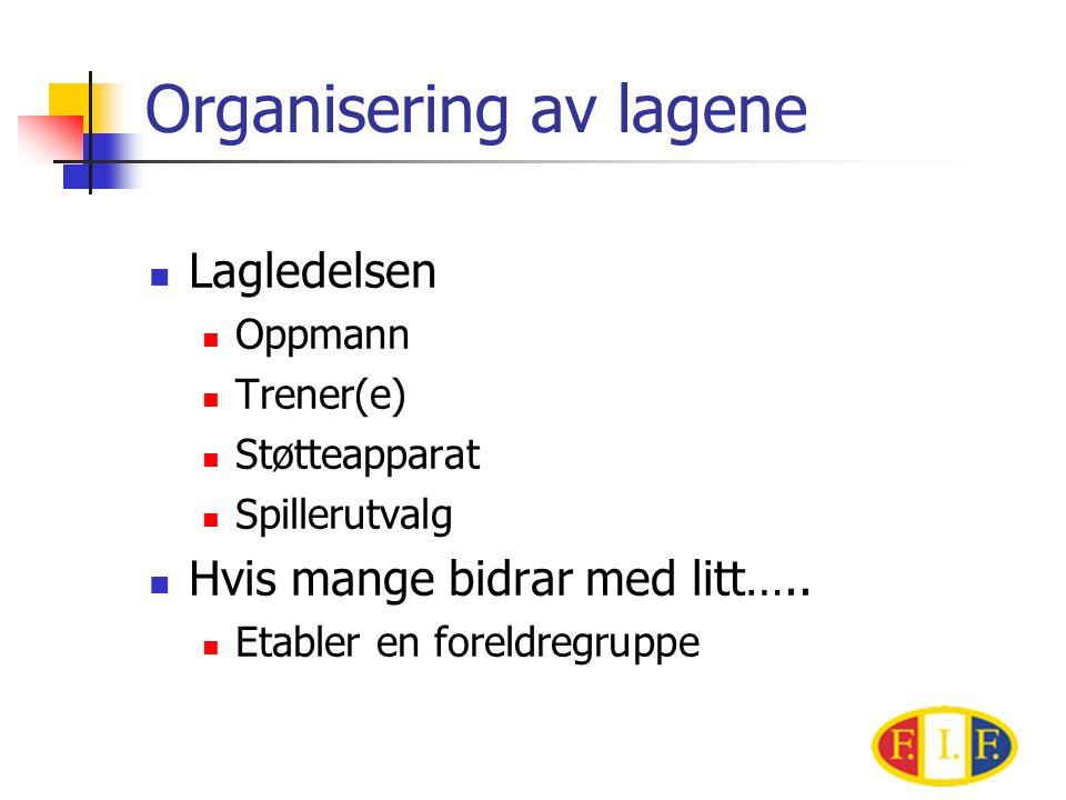 Organisering av lagene