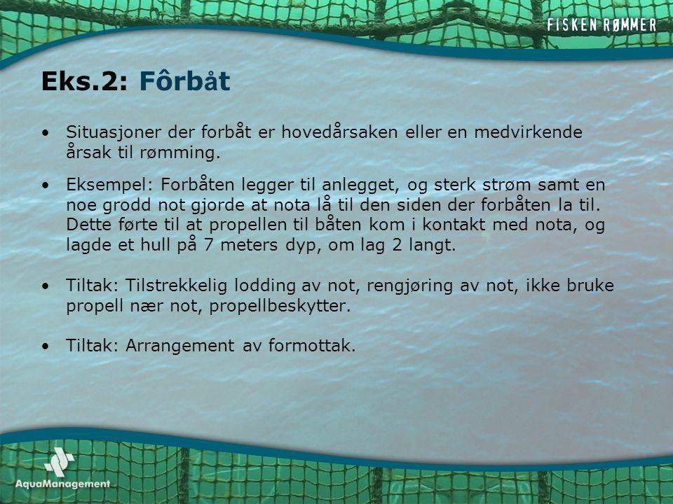 Eks.2: Fôrbåt Situasjoner der forbåt er hovedårsaken eller en medvirkende årsak til rømming.