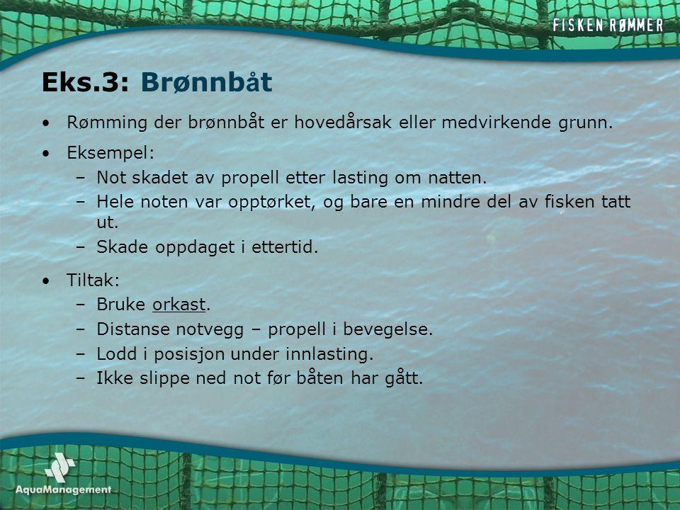 Eks.3: Brønnbåt Rømming der brønnbåt er hovedårsak eller medvirkende grunn. Eksempel: Not skadet av propell etter lasting om natten.