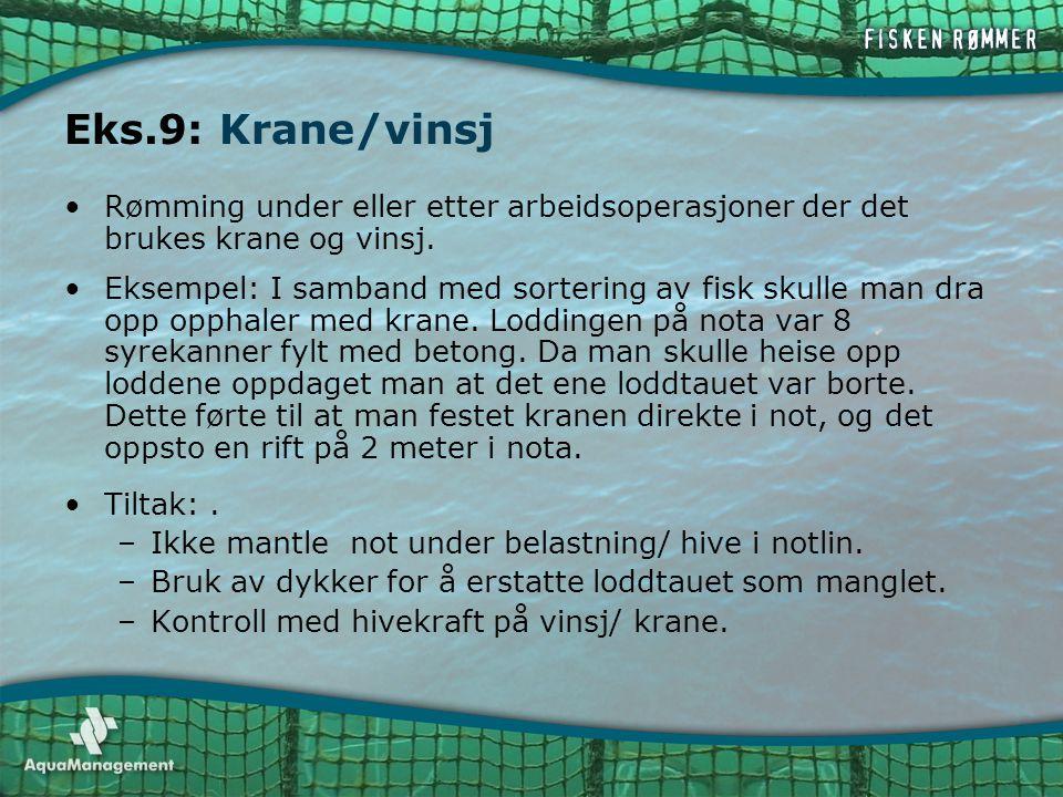 Eks.9: Krane/vinsj Rømming under eller etter arbeidsoperasjoner der det brukes krane og vinsj.