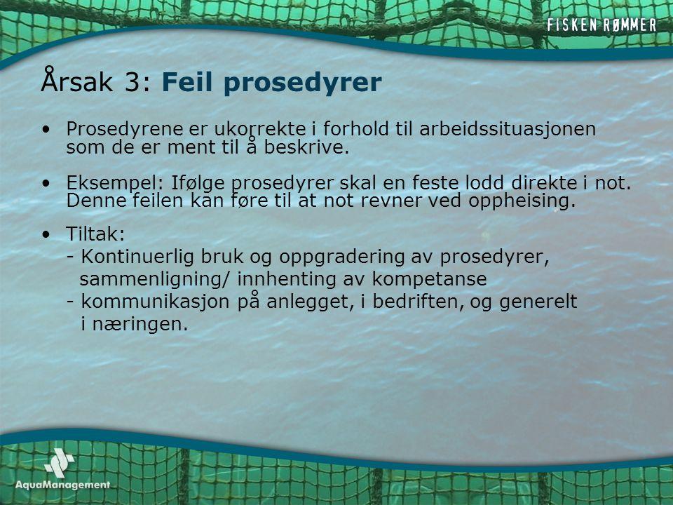 Årsak 3: Feil prosedyrer