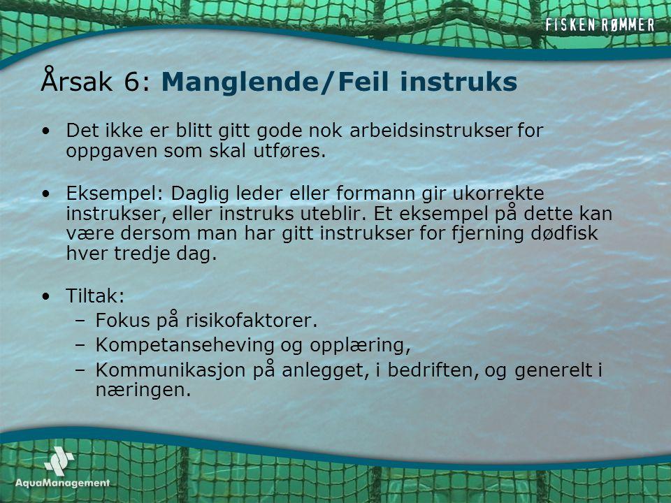 Årsak 6: Manglende/Feil instruks