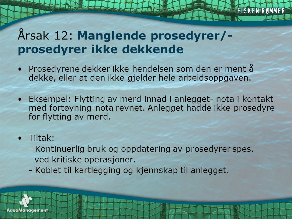 Årsak 12: Manglende prosedyrer/-prosedyrer ikke dekkende