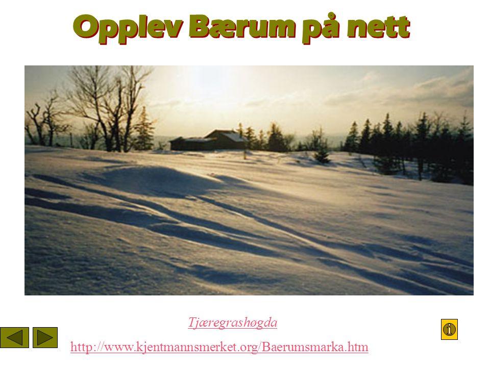 Opplev Bærum på nett Den fjerneTjæregrashøgdaer høyeste punkt.