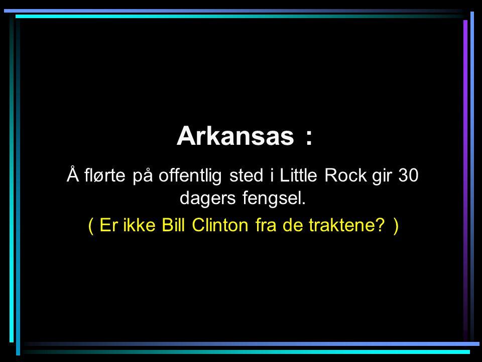 Arkansas : Å flørte på offentlig sted i Little Rock gir 30 dagers fengsel.