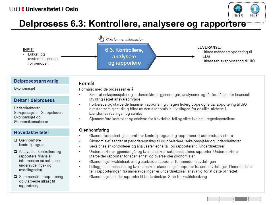 Delprosess 6.3: Kontrollere, analysere og rapportere