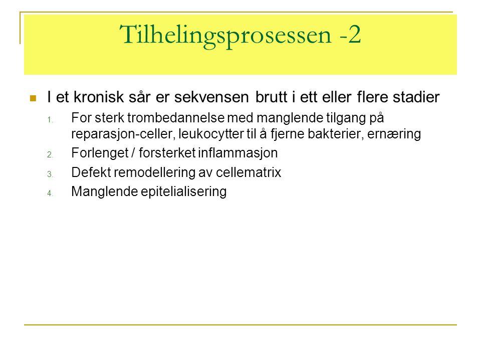 Tilhelingsprosessen -2