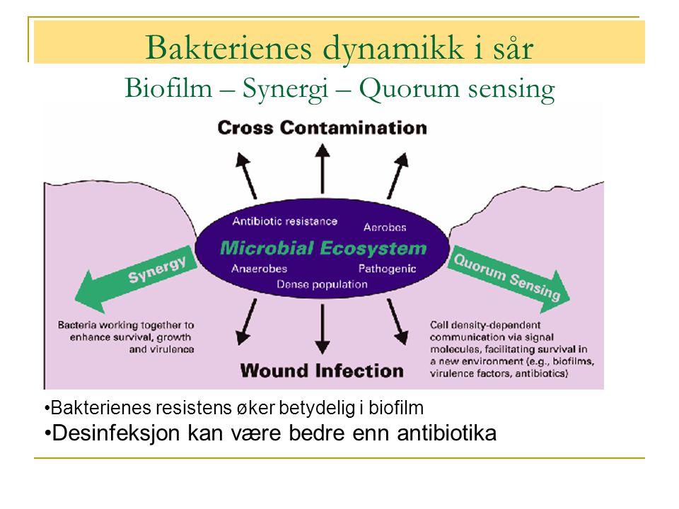 Bakterienes dynamikk i sår Biofilm – Synergi – Quorum sensing