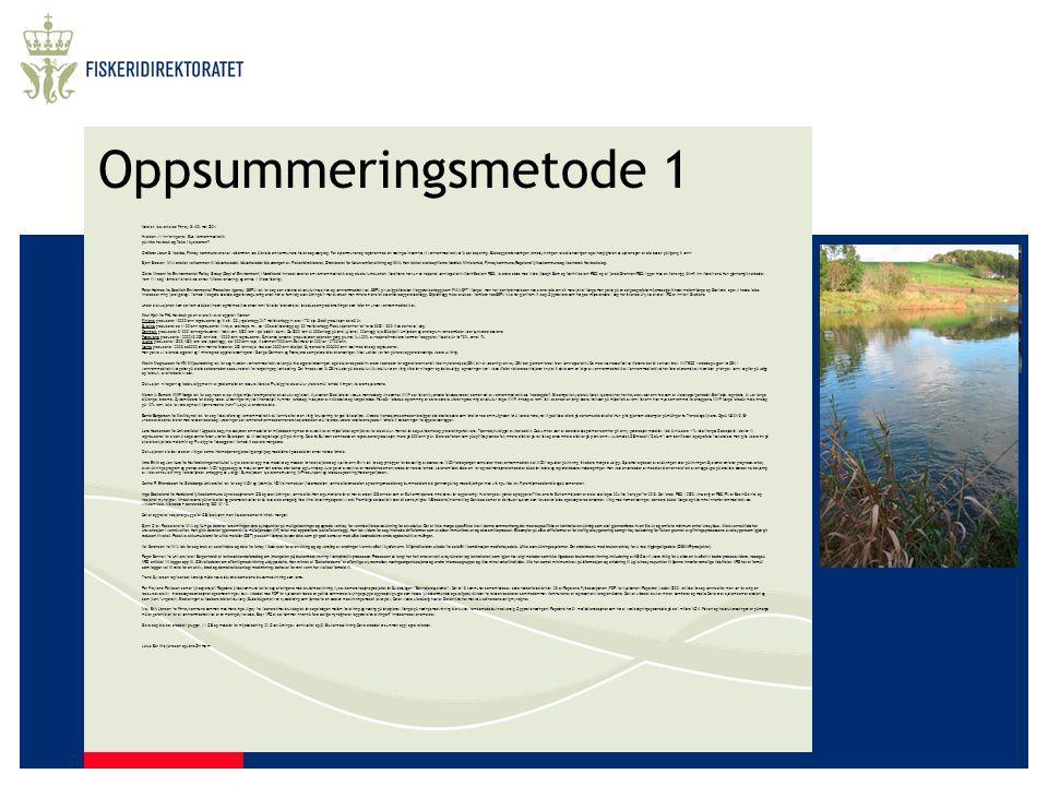 Oppsummeringsmetode 1 Nordisk Idéverksted Finnøy 24.-26. mai 2004