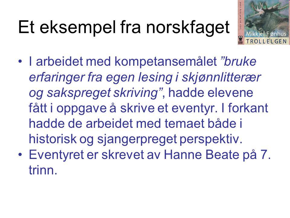 Et eksempel fra norskfaget