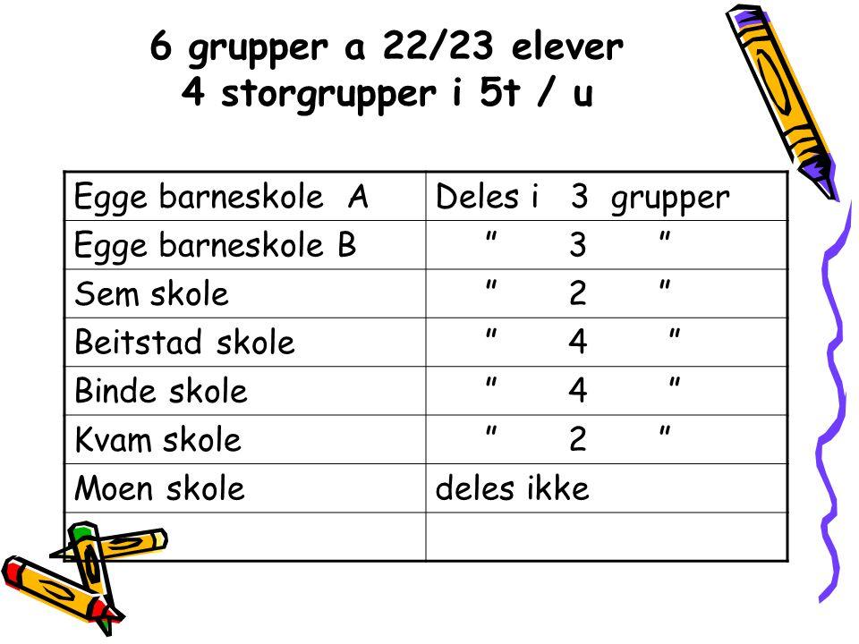 6 grupper a 22/23 elever 4 storgrupper i 5t / u