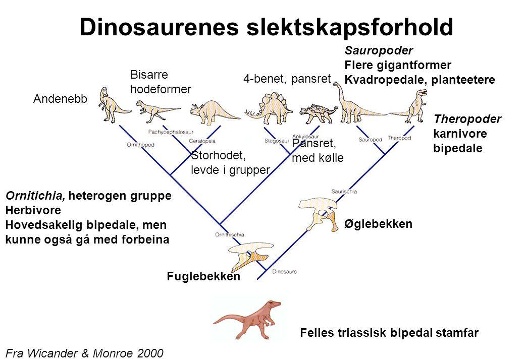 Dinosaurenes slektskapsforhold