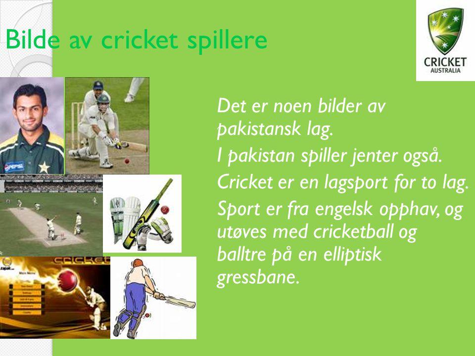 Bilde av cricket spillere