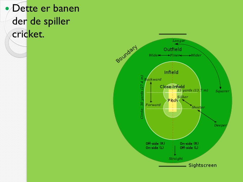 Dette er banen der de spiller cricket.