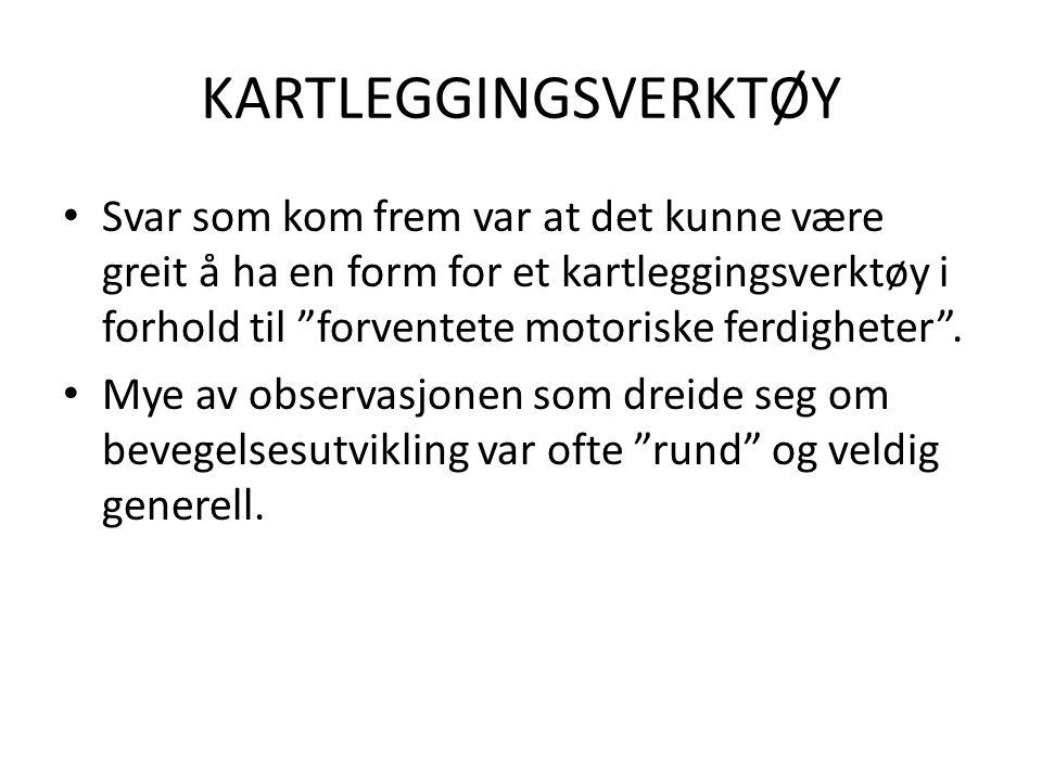 KARTLEGGINGSVERKTØY