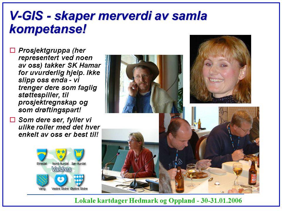 V-GIS - skaper merverdi av samla kompetanse!