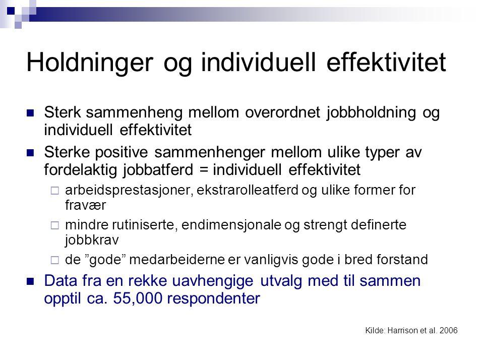 Holdninger og individuell effektivitet