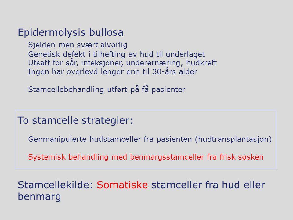 Epidermolysis bullosa Sjelden men svært alvorlig