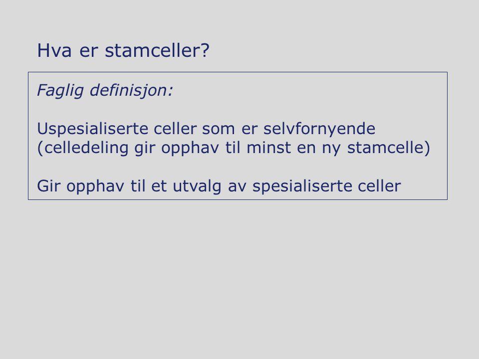 Hva er stamceller Faglig definisjon: